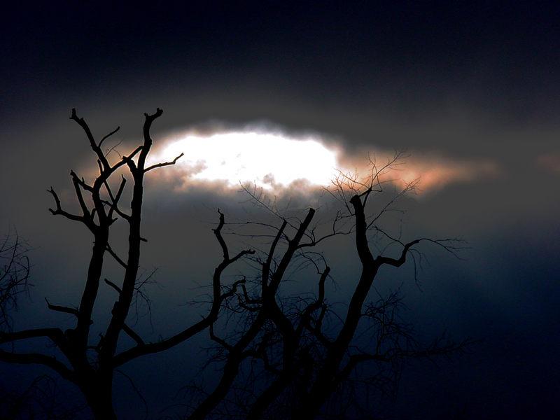 knochige Dunkelheit