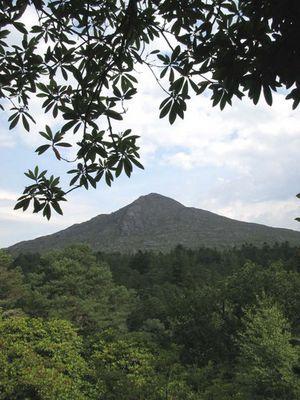 Knockatee Mountain