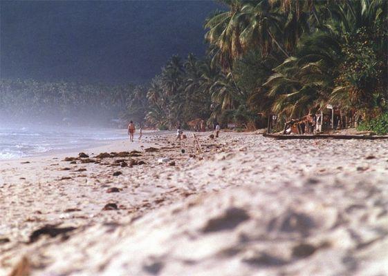 Ko Samui aus Sicht des Strandkäfers