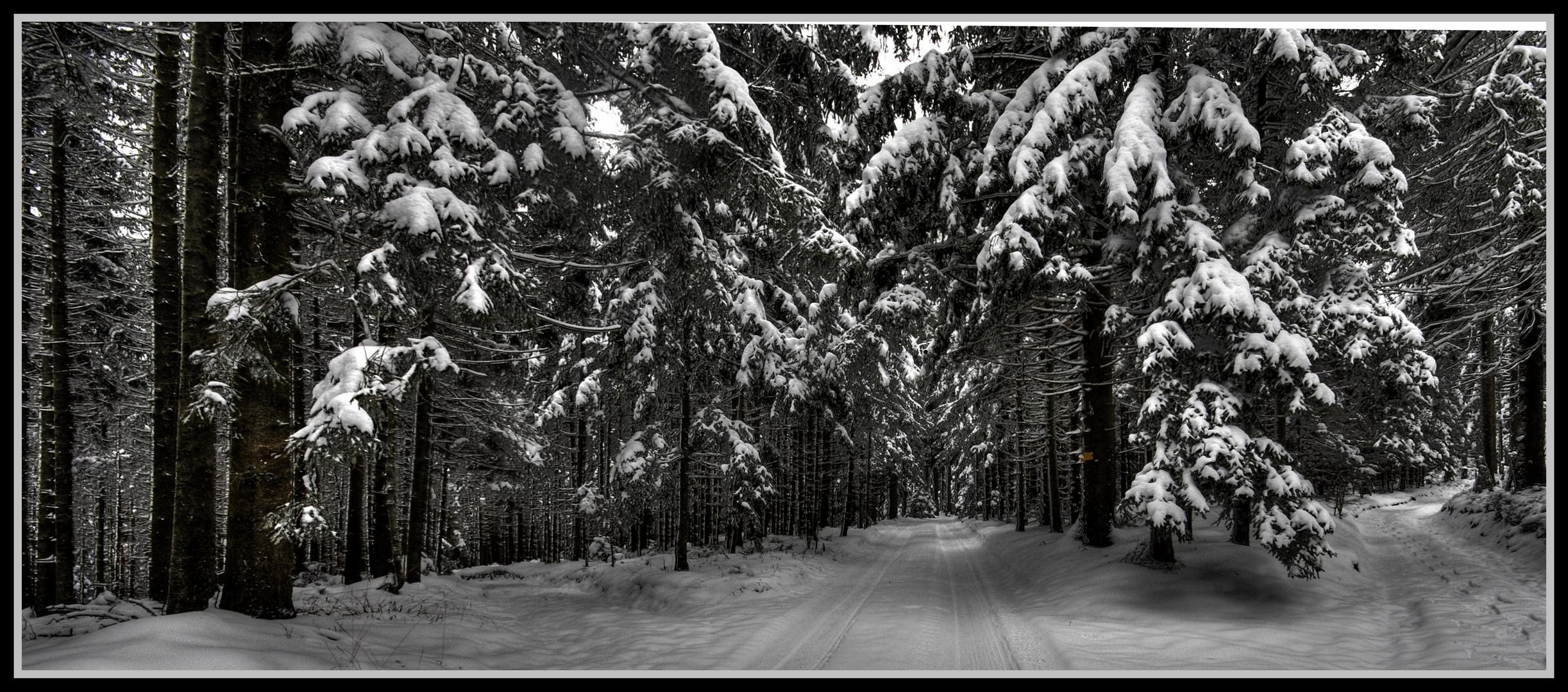 Kober-Wald