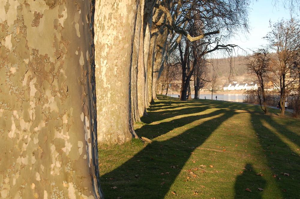 Koblenz - Kaiserin Augusta Anlagen am Rhein