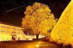 Koblenzer Herbsthimmel
