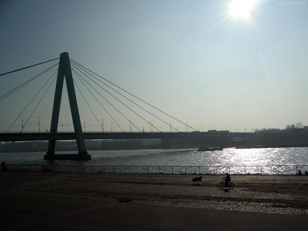Köln im Gegenlicht