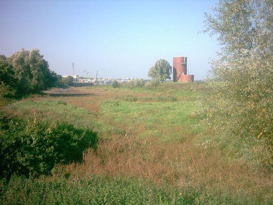 Köln Worringen ( Rheinarm)