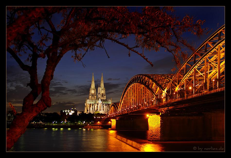 Kölner Brückenschlag