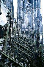 Kölner Dom in 45 m Höhe außen Nordseite