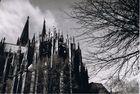 Kölner Dom s/w