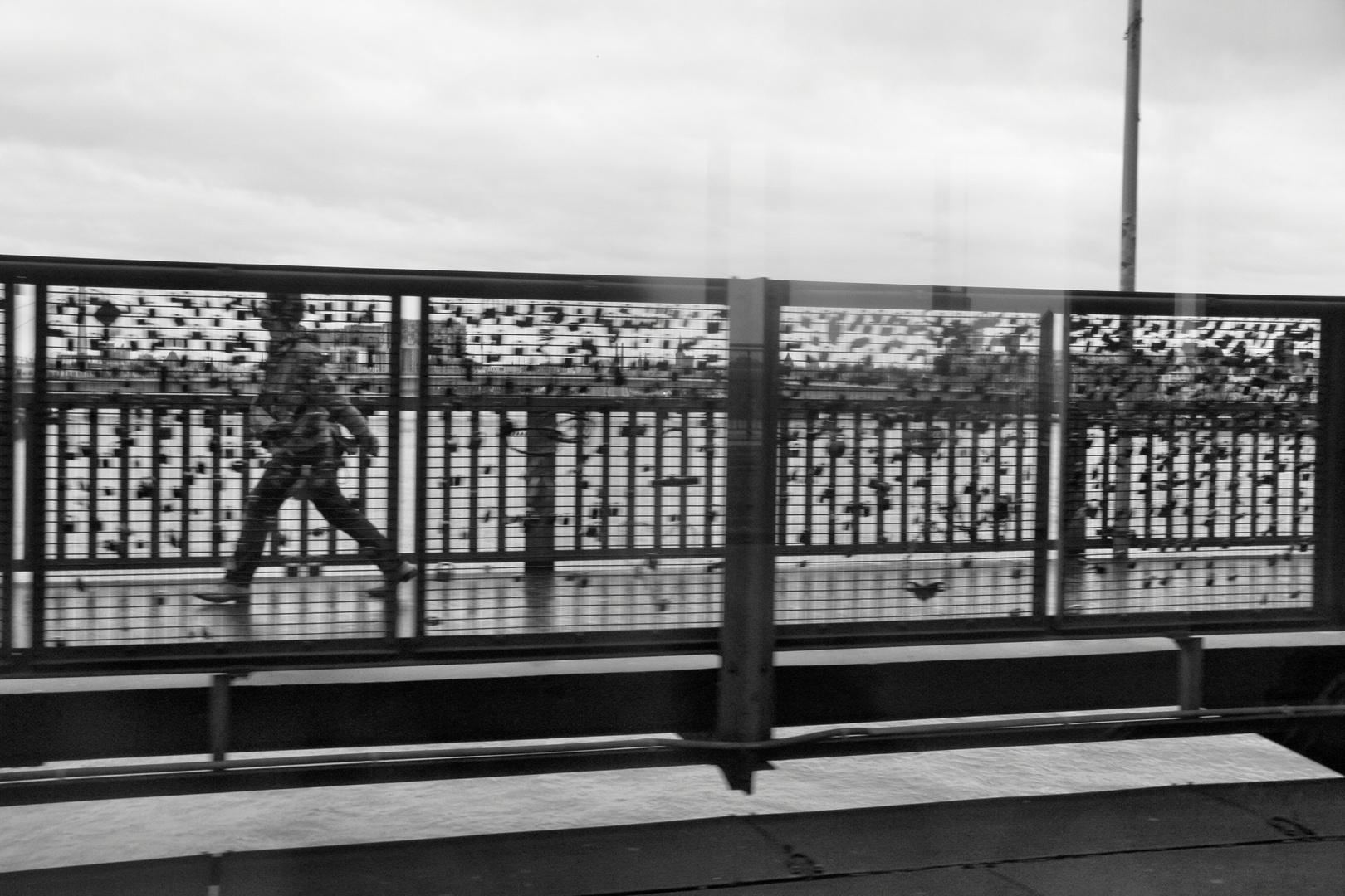 Kölner Rheinbrücke