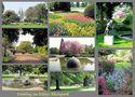 Kölner Rheinpark im Frühjahr von Günter Walther