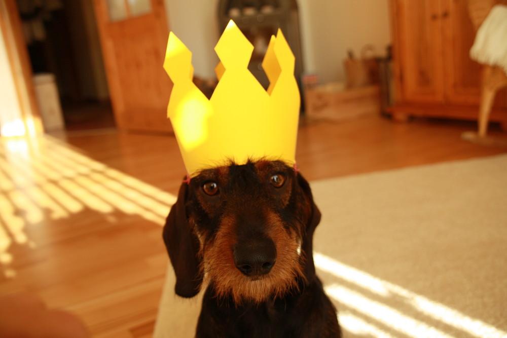 König Jasper der Erste // Teil II