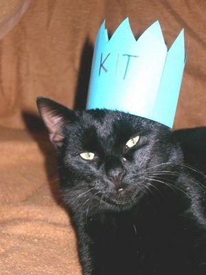 König Kit