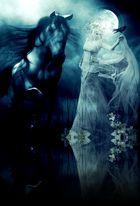 Königin Der Nacht