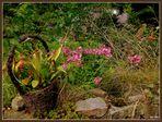 -Körbchen auf der Natursteinmauer-