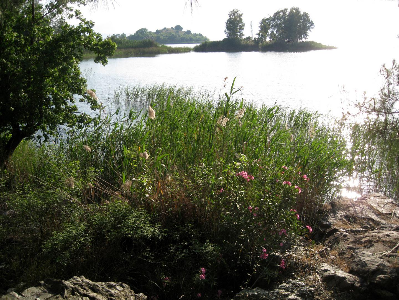 Köycegiz See, Süd- West Türkei