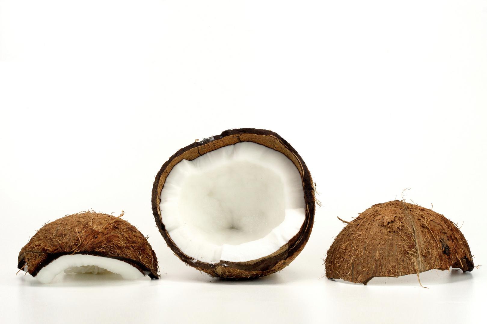 Kokosnuß f