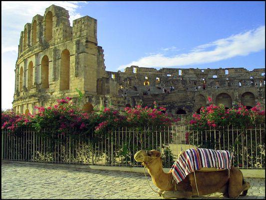 Kolloseum von El Jem (Tunesien)