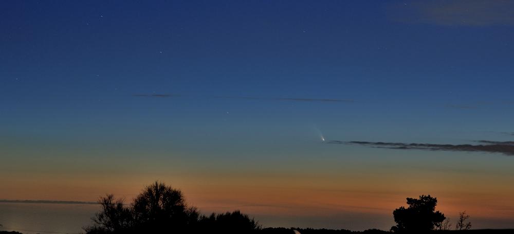 Komet Panstarrs am Abendhimmel