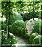 Komm' mit mir in meinen Garten...