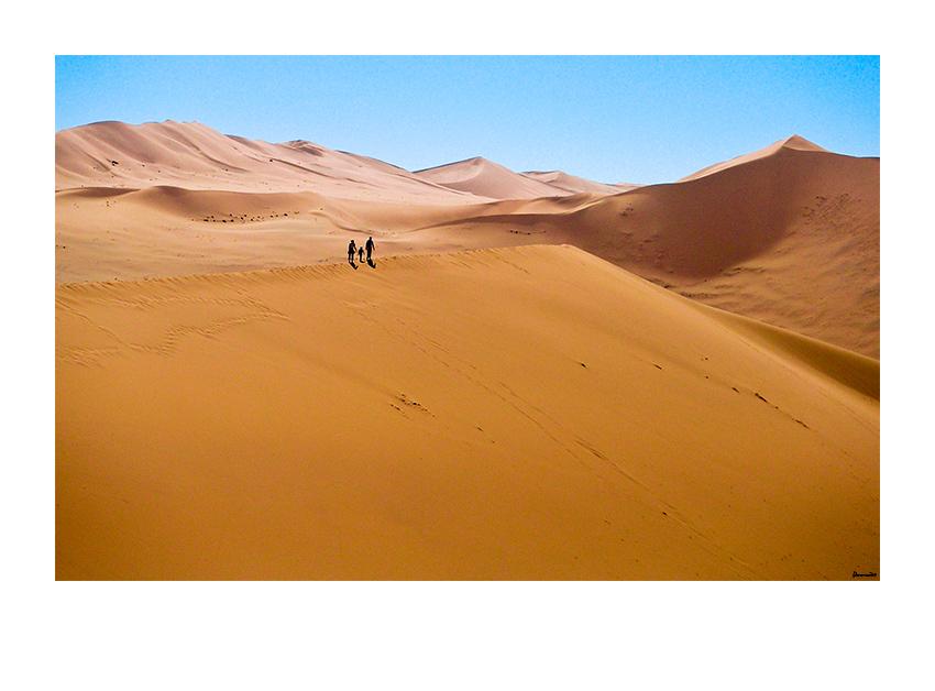 Komm wir gehen in die Wüste
