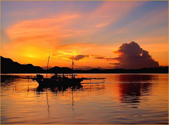 >>> Komodo II, die Fischer kehren zurück <<<