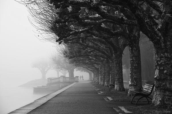 Konstanzer Winterwetter