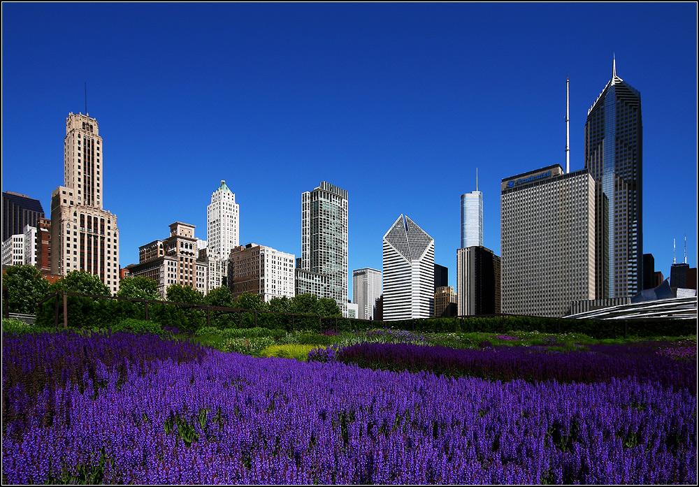 Chicago Bilder chicago bilder fotos