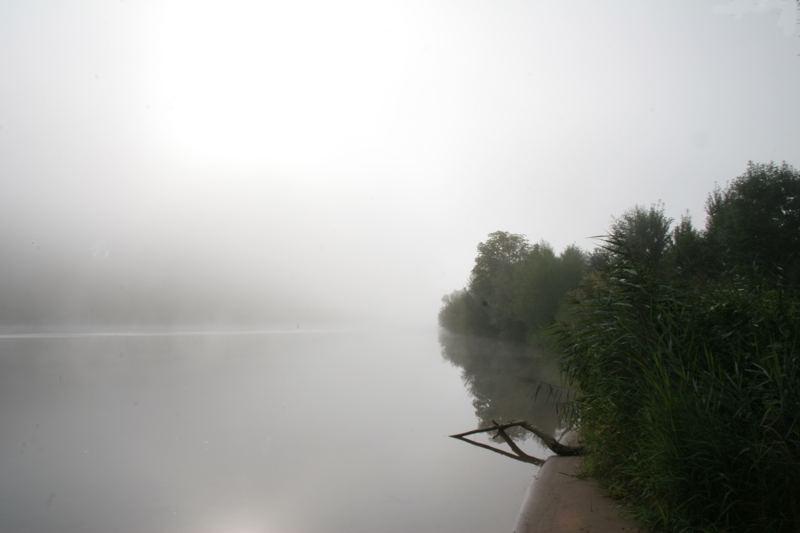 Konz ....Morgen-nebel im august