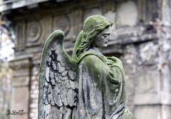 konzentrierter Engel