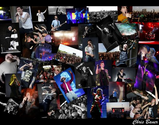 Konzerte & Festivals 2010