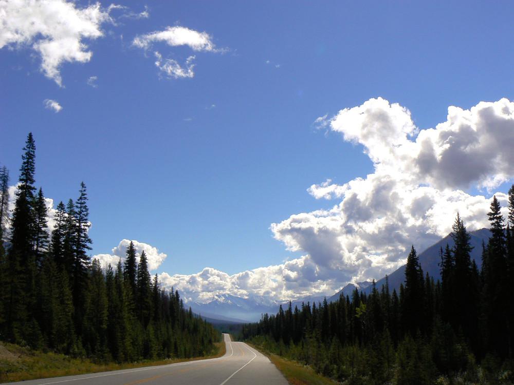 Kootenay N.P. British Columbia, Canada.