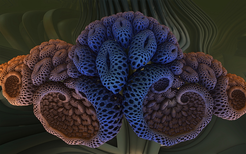 Korallenblume