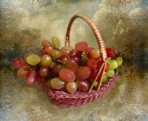 Korb mit Weintrauben