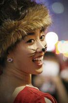 Korean Cat