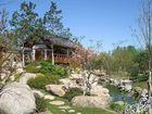 Koreanischer Garten I