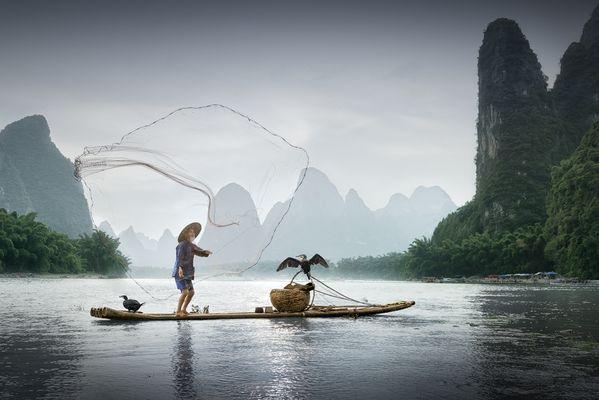 Kormoranfischer am Li-Fluß