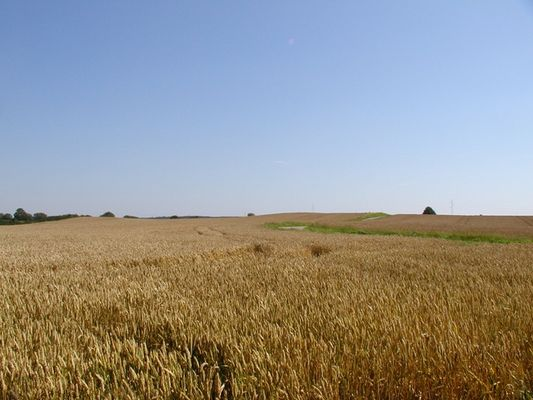 Kornkammer