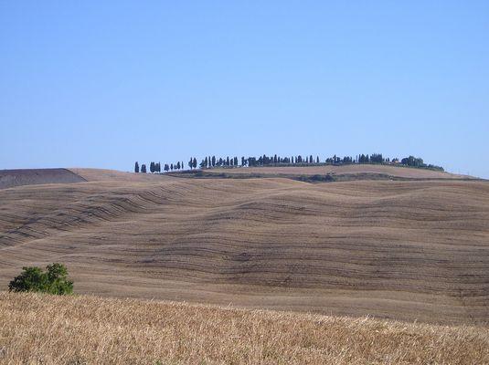 Kornkammer Toskana