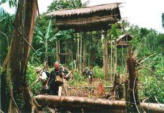 Korowai- Baumhäuser Irian Jaya