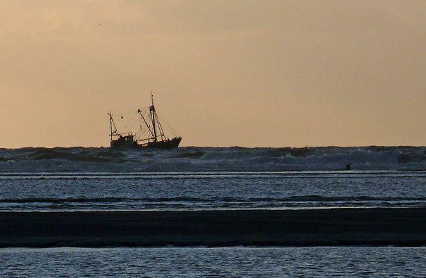 Krabbenfischer vor Langeoog