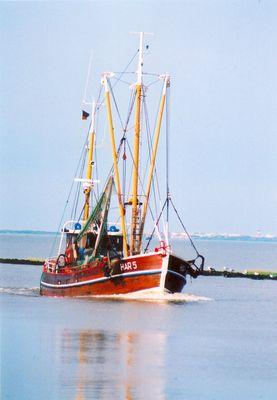 Krabbenkutter