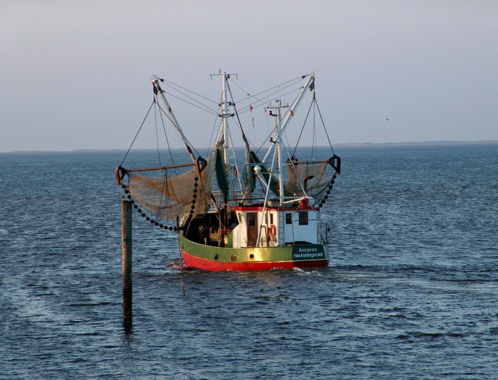 Krabbenkutter Nordsee