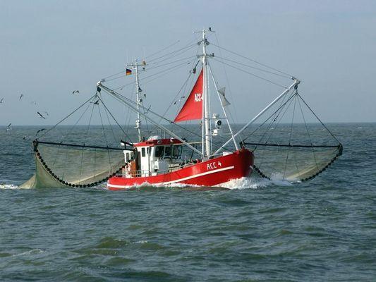 Krabbenkutter vor Büsum