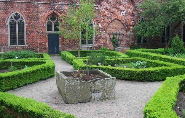 Kräuter garten Kloster Ter Apel