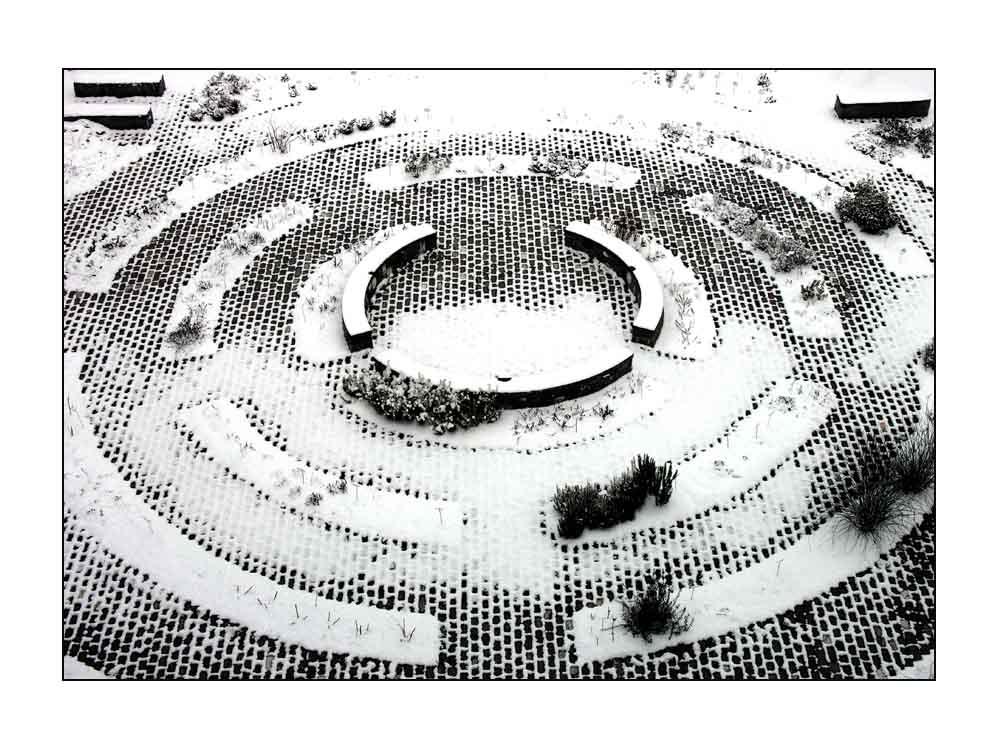 Kräutergarten im Winter