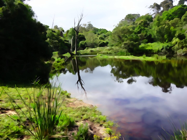 Kragga-Kamma Park
