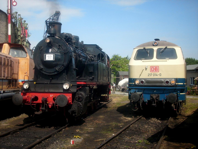 Kranichsteiner Bahnwelttage (1)