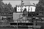Kranichsteiner Bahnwelttage (16)