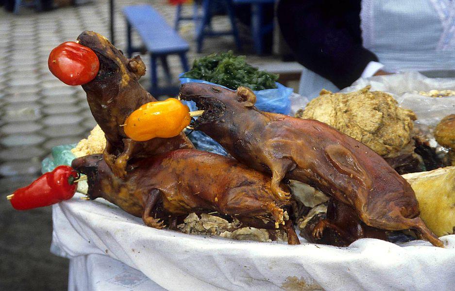 Kreaturen - Laokoon Gruppe aus gegrillten Meerschweinen