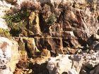Kreide - Steilküste