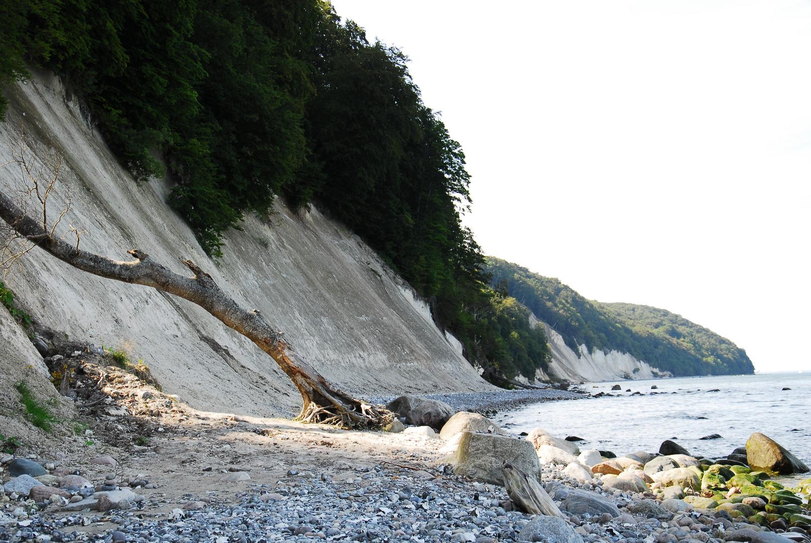 Kreidefelsen Küste